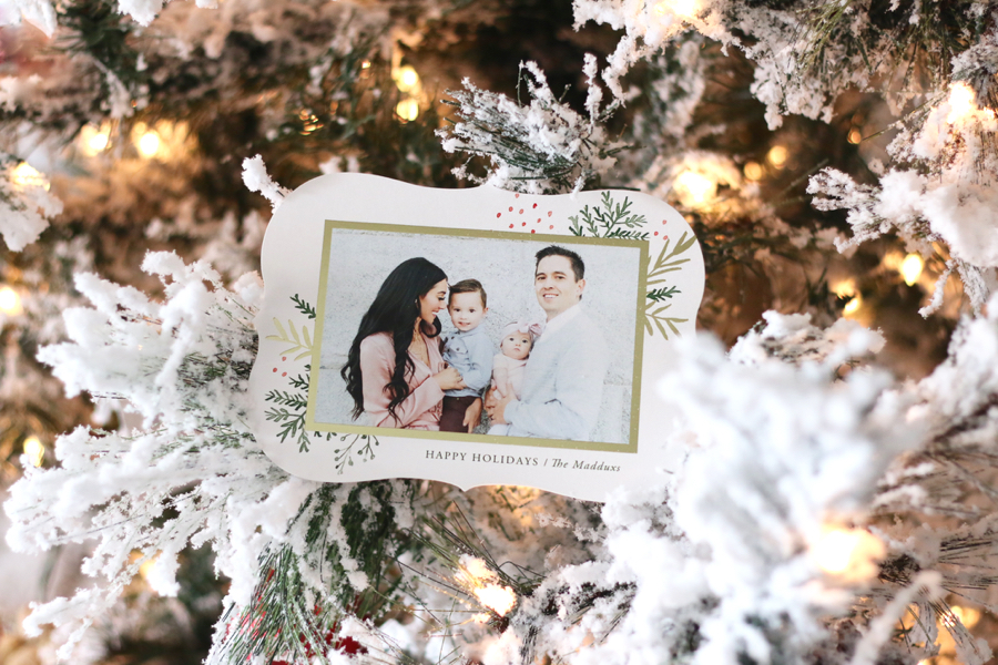 Christmas Pictures & Card Reveal